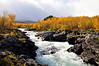Autumn in Sweden : Welcome to Sweden National Park in Abisko. The national park is a birch-clad valley with flowery alpine meadows and river rapids. It is surrounded by lofty mountains and Scandinavia's highest alpine lake, Torneträsk. Abisko is one of the sunniest places in the country and a classic starting point for hikes in Lapland's mountainous world. www.shutterstock.com/g/contas