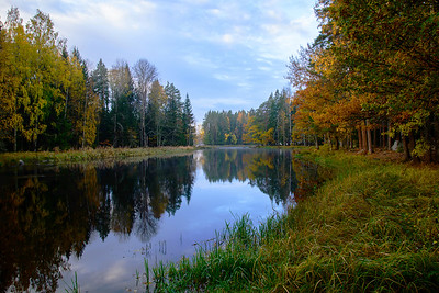View of a river in autumn before the sunrise